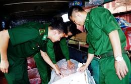 Bắt giữ hơn 400 kg thịt động vật đang phân hủy