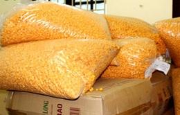 Phát hiện hơn 2,5 tấn bánh kẹo, bim bim không rõ nguồn gốc