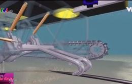 Hoàn thành bảo trì tuyến cáp quang biển AAG