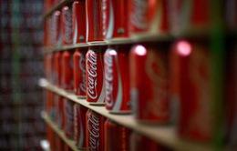 Phát hiện 370kg cocaine trong nhà máy sản xuất Coca-cola