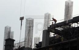 ADB hạ dự báo tăng trưởng