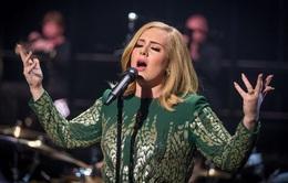 Adele bác tin biểu diễn tại Super Bowl