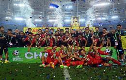 AFF Suzuki Cup 2014: ĐT Việt Nam dừng bước tại bán kết