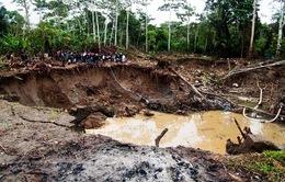 """""""Vàng tặc"""" - Vấn nạn tại đất nước Peru"""