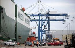 Mỹ: Xuất khẩu sẽ bất lợi nếu Quốc hội không phê chuẩn TPP