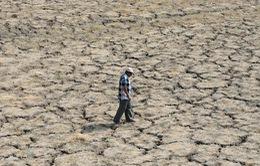 Nắng nóng khiến hơn 100 người tử vong tại Ấn Độ