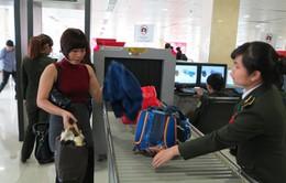 Giám sát liên tục hành lý ký gửi qua đường hàng không