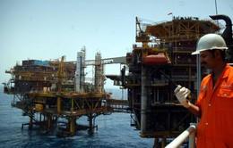 Ấn Độ dẫn đầu thế giới về các hoạt động thăm dò, khai thác dầu