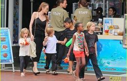 Angelina Jolie đang điều trị tâm lý với các con
