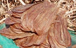 Khô rắn - đặc sản mùa nước nổi vùng ĐBSCL