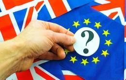 Tỷ lệ ủng hộ Anh rời EU  tăng vọt