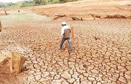 Năm 2016, miền Trung thiệt hại gần 2 tỷ USD do biến đổi khí hậu