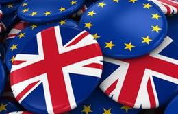 Vì sao nước Anh muốn rời EU?