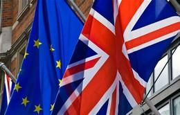 Anh: Hai thành phố láng giềng chia rẽ trước nguy cơ Anh rời EU
