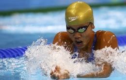 Giải bơi Tokyo World Cup 2016: Ánh Viên phá kỷ lục cá nhân 200m hỗn hợp