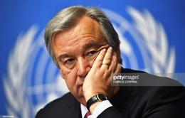 Liên Hợp Quốc lo ngại làn sóng bài Hồi giáo thúc đẩy chủ nghĩa khủng bố
