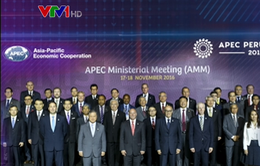 APEC cần tiếp tục thể hiện vai trò là động lực của tăng trưởng
