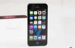 Apple có thể sẽ không ra mắt iPhone SE mới năm 2017