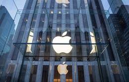 Kháng cáo bất thành, Apple phải bồi thường 450 triệu USD