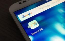Apple bác tin đồn làm ứng dụng chuyển dữ liệu từ iOS sang Android