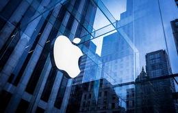 Apple và quan hệ đồng minh Mỹ - EU