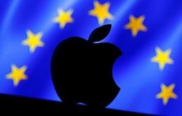 """Apple: """"Muốn có thuế hoặc công ăn việc làm, nhưng không thể có cả hai"""""""