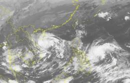 Áp thấp nhiệt đới hướng về đất liền khu vực Trung Trung Bộ
