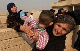 1.000 thường dân Iraq được giải cứu khỏi IS