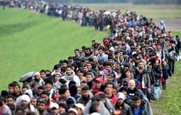 Hai hãng bán lẻ của Anh bị cáo buộc bóc lột trẻ em tị nạn