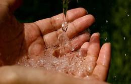 Mỹ: Lo ngại hàm lượng asen cao trong đất tại Montgomery