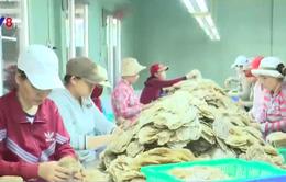 Phú Yên: Phát hiện nhiều sai phạm trong sản xuất, kinh doanh thực phẩm