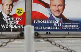 Bầu cử Tổng thống Áo: Ứng viên đảng Xanh giành chiến thắng