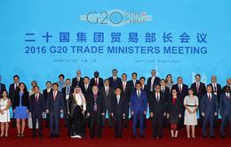Hội nghị Bộ trưởng Thương mại G20 thúc đẩy phục hồi kinh tế thế giới