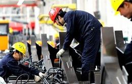 ANZ: Kinh tế Việt Nam vượt trội trong khu vực