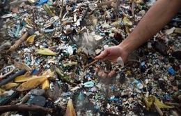 """Đây là cách Hawaii đang làm để """"đuổi"""" rác thải ra khỏi các bãi biển"""