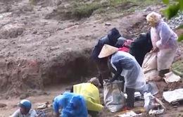 Nan giải vấn đề việc làm cho người dân quanh mỏ vàng