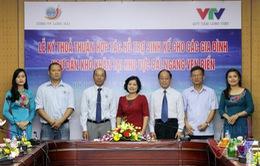 Quỹ Tấm lòng Việt hỗ trợ ngư dân ven biển gặp khó khăn