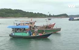 Những ngư dân đảo Cô Tô ngày đêm vươn khơi bám biển