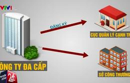 Phân quyền cho các địa phương trong quản lý bán hàng đa cấp