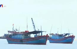 Đi biển thua lỗ, ngư dân Phú Yên phải bán tàu cá