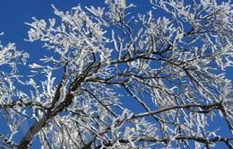 Bắc Bộ có khả năng xảy ra băng giá và xuất hiện mưa tuyết