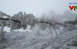 Rét đậm trên diện rộng, vùng núi tiếp tục có băng tuyết