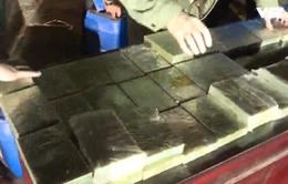 Phú Thọ bắt vụ vận chuyển 300 bánh heroin ngụy trang bằng đỗ tương