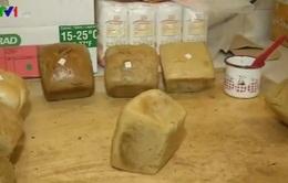 Chế biến bánh mì giúp ngăn ngừa bệnh