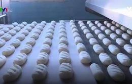 Nhà máy bánh mỳ gần 90 năm tuổi