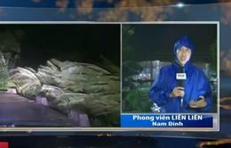 Nam Định: Nhiều nhà dân tốc mái, cây xanh bị đổ do bão số 1