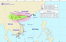 Chiều ngày 19/8, tâm bão số 3 trên vùng bờ biển Quảng Ninh - Thanh Hóa