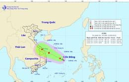 Áp thấp nhiệt đới mạnh lên thành bão trong 12 giờ tới