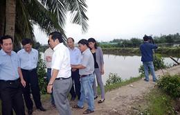 Quảng Nam: Điều chỉnh nhiều hạng mục dự án nuôi thủy sản tập trung