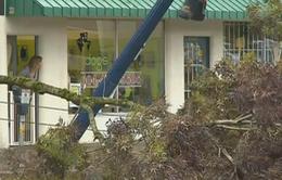 Canada: Hàng nghìn hộ dân mất điện vì bão lớn